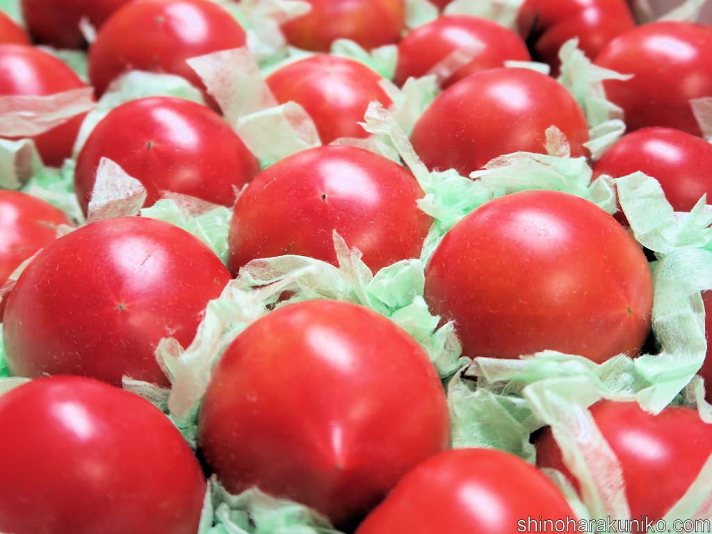 ファーム輝のトマトちゃん