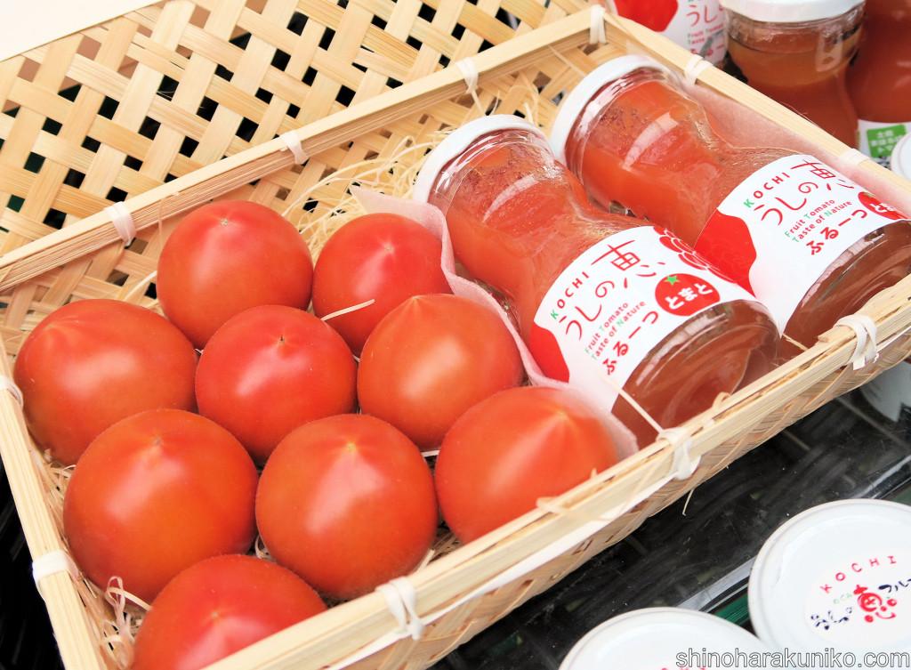 うしの恵フルーツトマトギフト