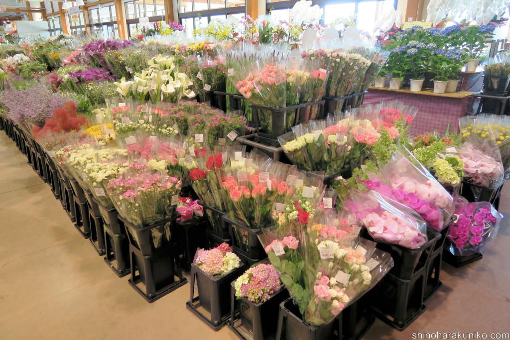 入口でお客様を迎えるかのような花コーナーはもはや花屋レベル。