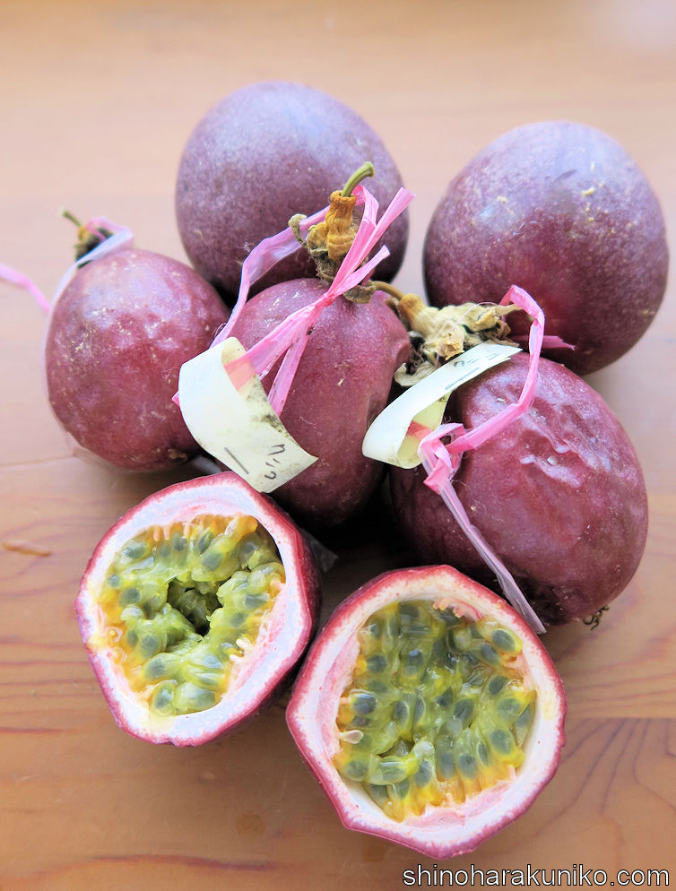クニコのパッションフルーツ