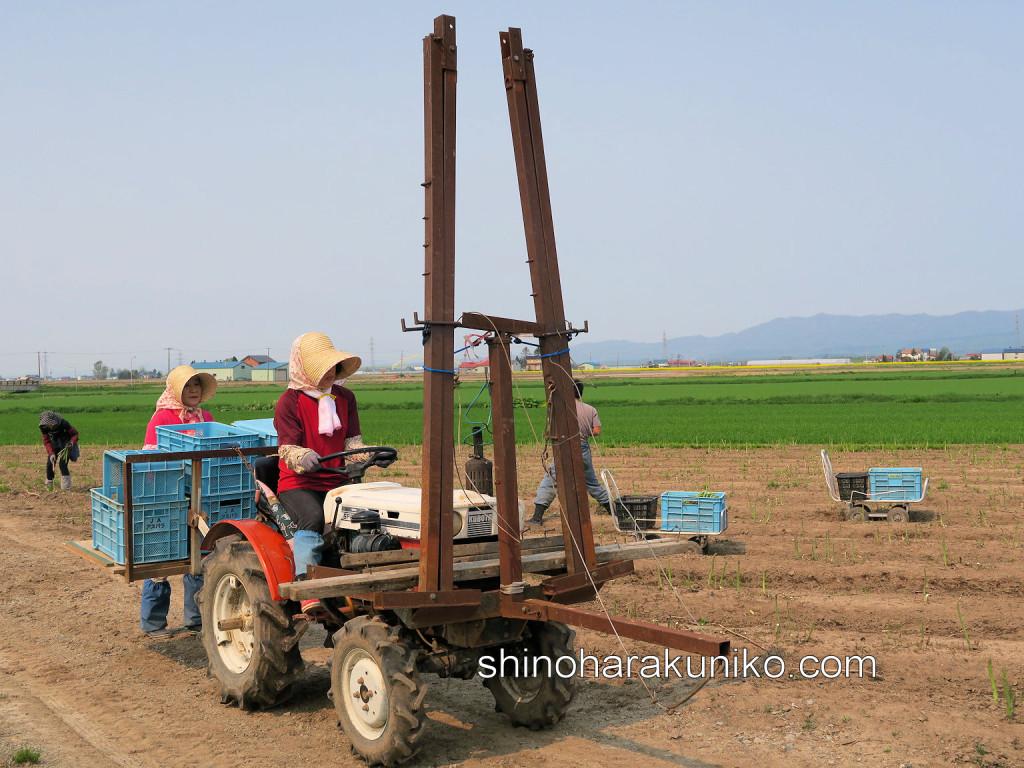 収穫補助機